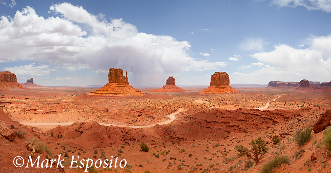 Monument Valley Landscapee